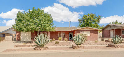 El Paso Single Family Home For Sale: 217 Stratus Road
