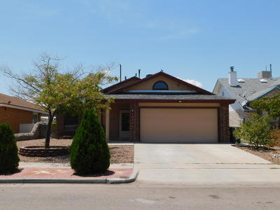 El Paso Single Family Home For Sale: 1057 Desierto Luna Street