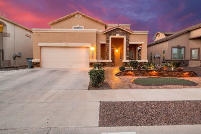 El Paso Single Family Home For Sale: 14569 Spanish Point Drive