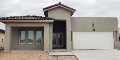 El Paso Single Family Home For Sale: 241 Malta