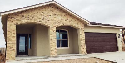Single Family Home For Sale: 323 Malta