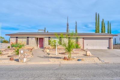 Single Family Home For Sale: 6237 Bandolero Drive