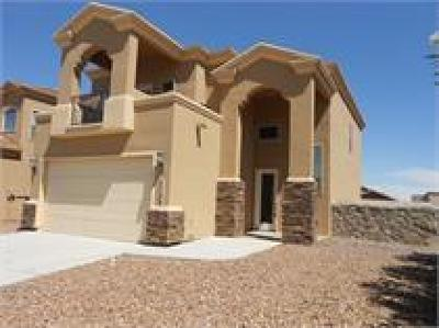 Single Family Home For Sale: 5388 Jack Marcus Drive