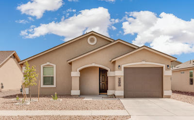 Single Family Home For Sale: 13812 San Juan River Road