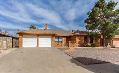 El Paso Single Family Home For Sale: 10104 Cisco Lane