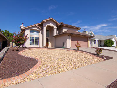 El Paso Single Family Home For Sale: 1421 Black Ridge Drive