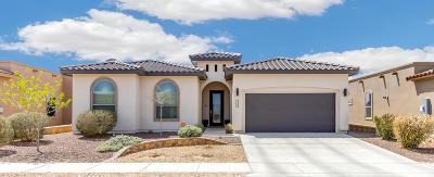 Single Family Home For Sale: 129 Tuscan Ridge Circle