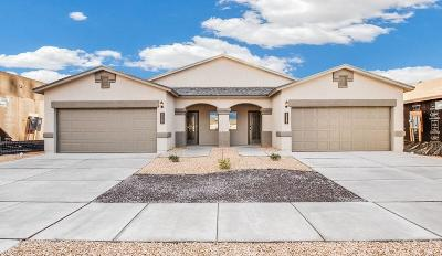 El Paso Single Family Home For Sale: 3461 Dana Grey #A &