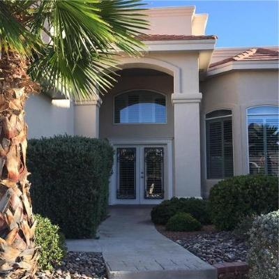El Paso Single Family Home For Sale: 6320 Franklin View Drive