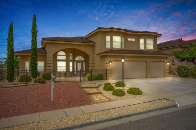 El Paso Single Family Home For Sale: 1451 Cherokee Ridge Drive