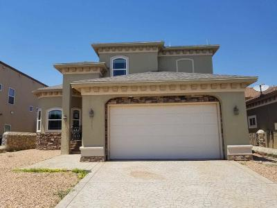 Single Family Home For Sale: 5569 Mike Vane Drive