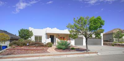 El Paso Single Family Home For Sale: 1439 Cloud Ridge Drive