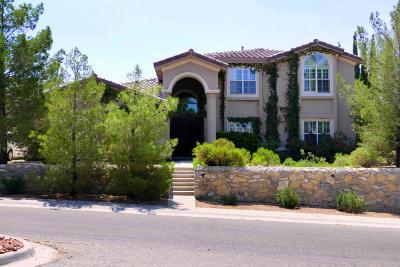 El Paso Single Family Home For Sale: 1064 Calle Parque Drive