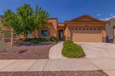 El Paso Single Family Home For Sale: 7429 Gulf Creek Drive