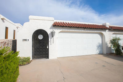 El Paso Single Family Home For Sale: 318 Thunderbird Drive