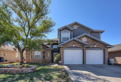 Single Family Home For Sale: 12272 Red Sun Drive