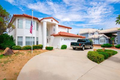 El Paso Single Family Home For Sale: 1959 Paseo Del Prado Drive