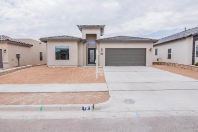 Single Family Home For Sale: 913 Muffleson Street