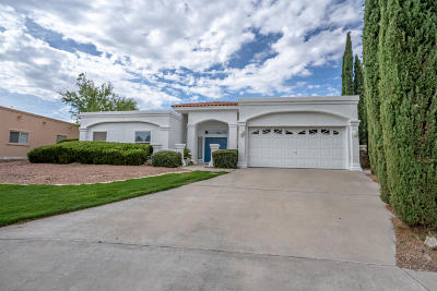 El Paso Single Family Home For Sale: 6936 Marble Canyon Drive