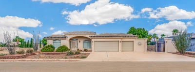 El Paso Single Family Home For Sale: 705 Whitney Ann Drive