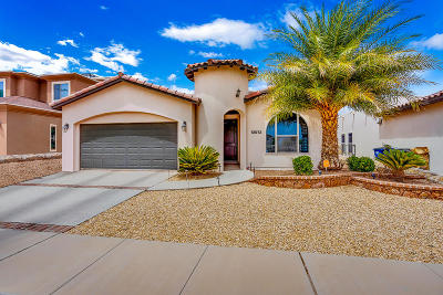 Single Family Home For Sale: 12973 Pleasant Manor Court
