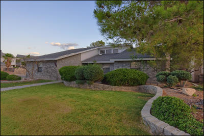El Paso Single Family Home For Sale: 6700 Brisa Del Mar Drive