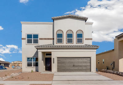 El Paso Single Family Home For Sale: 966 Selway River Place
