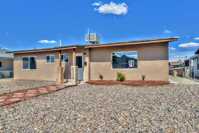 El Paso Single Family Home For Sale: 9032 Mount Etna Drive