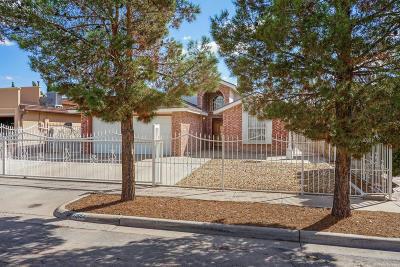 El Paso Single Family Home For Sale: 12056 Autumn Gate Drive