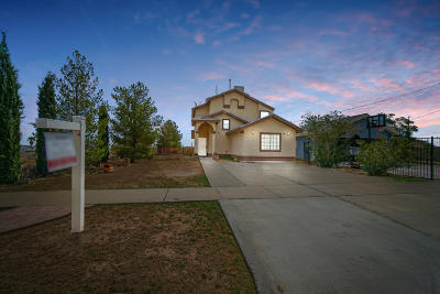 El Paso Single Family Home For Sale: 8816 Leo Street