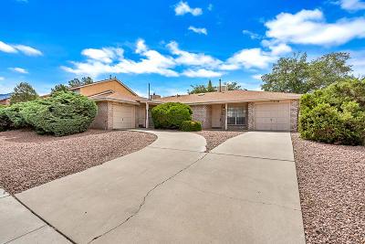El Paso Single Family Home For Sale: 7116-7118 Portugal Drive