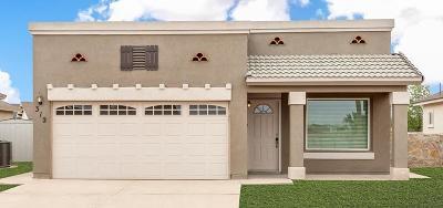 Single Family Home For Sale: 13574 Sproatley Street