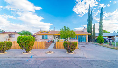 El Paso Single Family Home For Sale: 10208 Shipley Avenue
