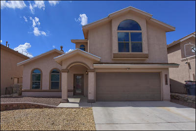 El Paso Single Family Home For Sale: 11293 Duster Drive