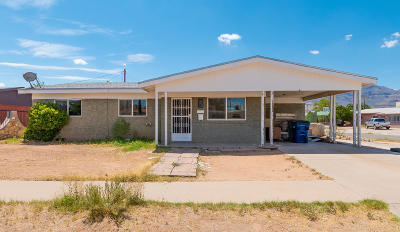 El Paso Single Family Home For Sale: 9109 Persimmon Street