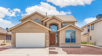 El Paso Single Family Home For Sale: 12516 Paseo Rosannie Avenue