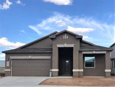 Single Family Home For Sale: 6048 Hidden Acres Street