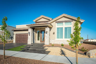 El Paso Single Family Home For Sale: 7384 Mule Team Drive