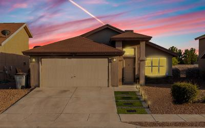 El Paso Single Family Home For Sale: 14252 Firewood Drive