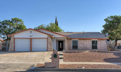 Vista Del Sol Single Family Home For Sale: 1437 Dale Douglas Drive