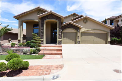 El Paso Single Family Home For Sale: 12161 Rathmore Drive