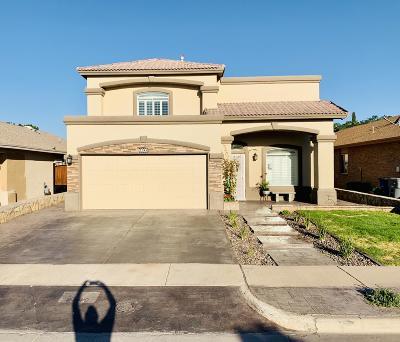 El Paso Single Family Home For Sale: 2349 Joshua Louis Drive