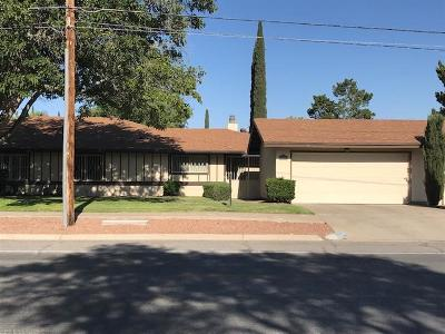 El Paso Condo/Townhouse For Sale: 1712 Mosswood Street