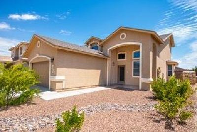 El Paso Single Family Home For Sale: 2224 Morning Mist Place