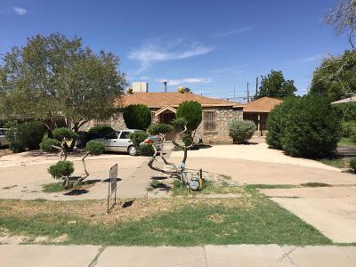 El Paso Single Family Home For Sale: 329 Buena Vista Street