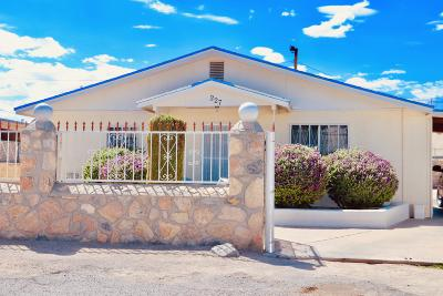 El Paso Single Family Home For Sale: 227 Galvan Place