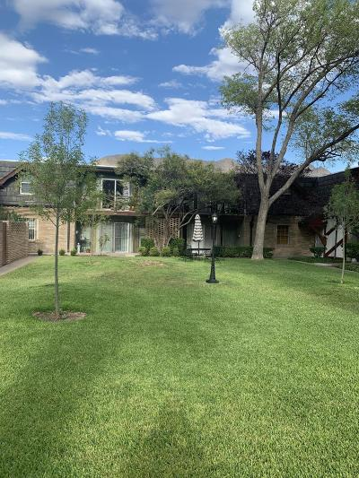 El Paso Condo/Townhouse For Sale: 350 Thunderbird Drive #58