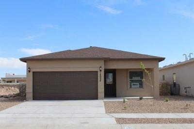 Single Family Home For Sale: 6920 Black Mesquite Drive