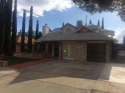 El Paso Single Family Home For Sale: 11449 David Carrasco Drive
