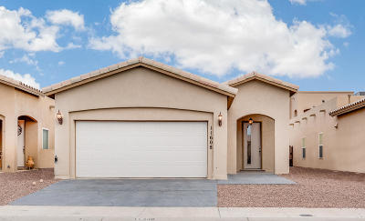 El Paso Single Family Home For Sale: 11608 Grotto Bay Court